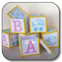"12 pc 2.5"" baby block cubes"